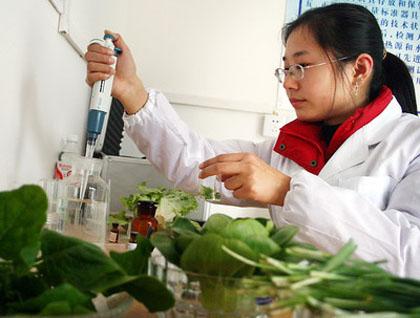 蔬菜检测中心